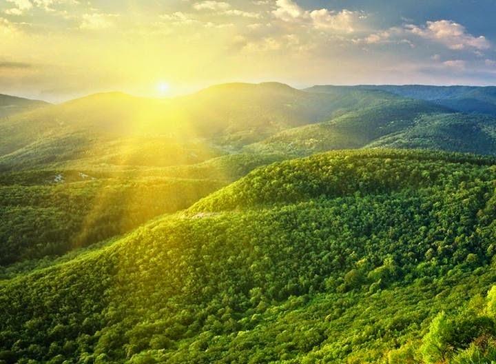 Full HD Green Nature Desktop Wallpaper Images