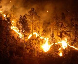 Apagando el Incendio. 20070730125822-incendio