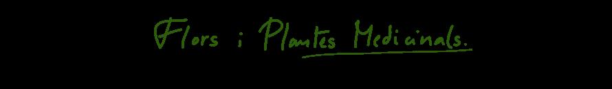 flors i plantes medicinals