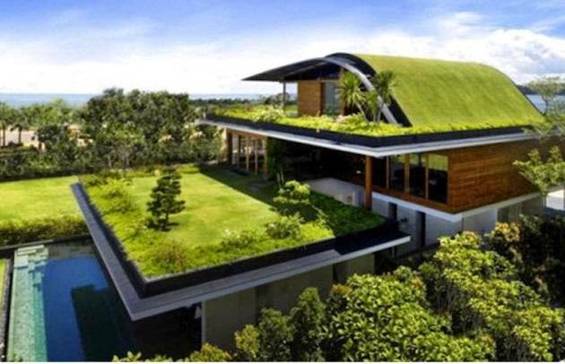 The Green Roof Revolution Is Coming.