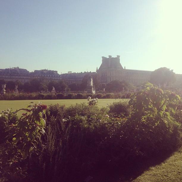 tuilerie gardens
