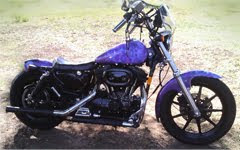 My Purple Sportster project