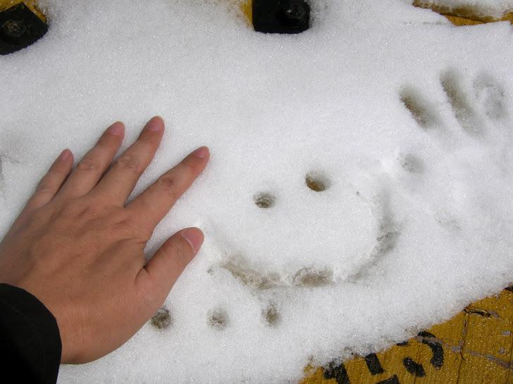 拉达克之《冬》