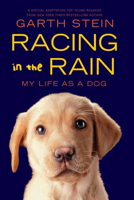 Racing in the Rain My Life as a Dog