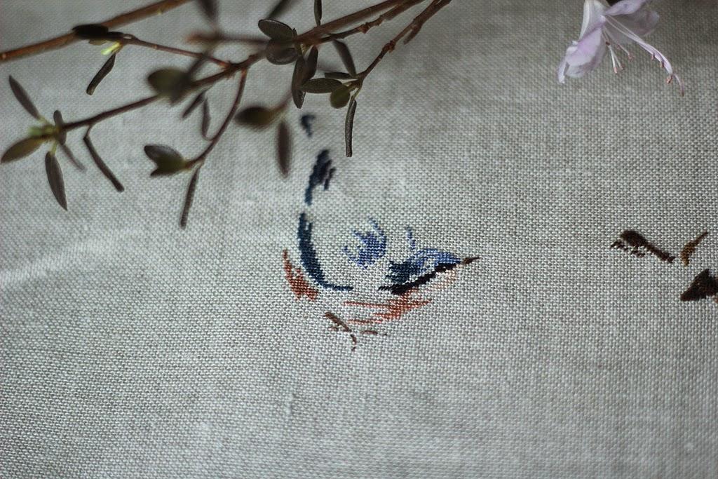 MTSA птицы, MTSA Nature, MTSA природа