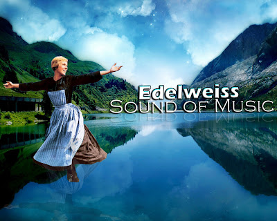 Edelweiss rodgers and hammerstein ii sound of music music edelweiss rodgers and hammerstein ii sound of music music letter notation with lyrics for flute violin recorder etc flutenotes m4hsunfo