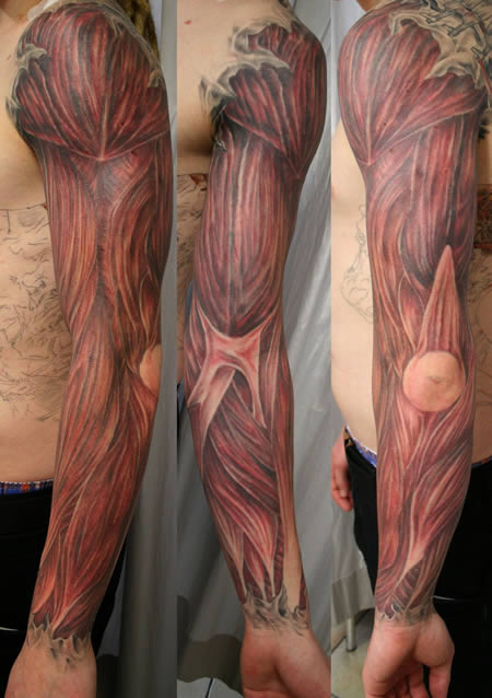 tattoo art anatomy tattoos