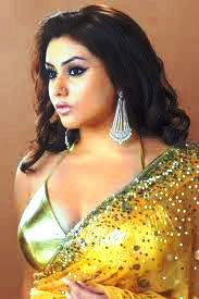 namitha-hot-in-saree-south-actress-2