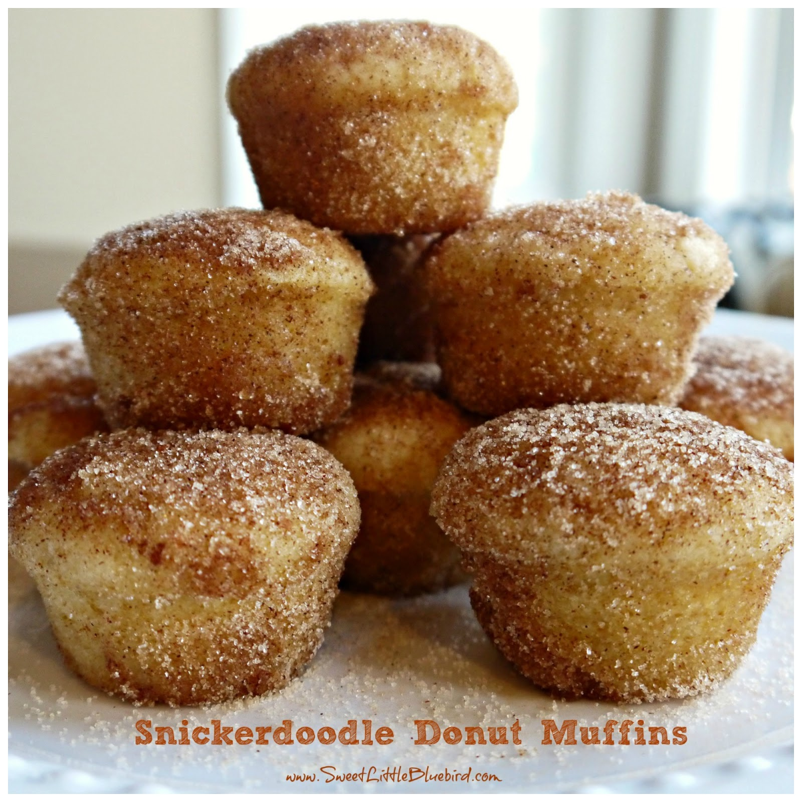 ... have the BEST recipe to share today!!! SNICKERDOODLE DONUT MUFFINS