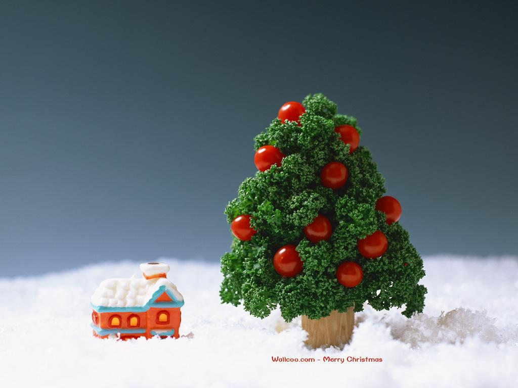http://1.bp.blogspot.com/-E2lvpcb0_3o/ToKSNodSwLI/AAAAAAAAGlw/GRY4cW4pUgY/s1600/Xmas%2Bwallcoo%2Bwallpaper%2Bhd%252C%2Bchristmas%2Bwallcoo%2Bwallpapers%252C%2Bchristmas%2Bwallpapers%2B%2528200%2529.jpg