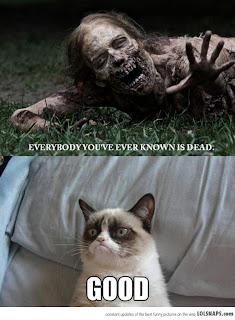 grumpy cat dead
