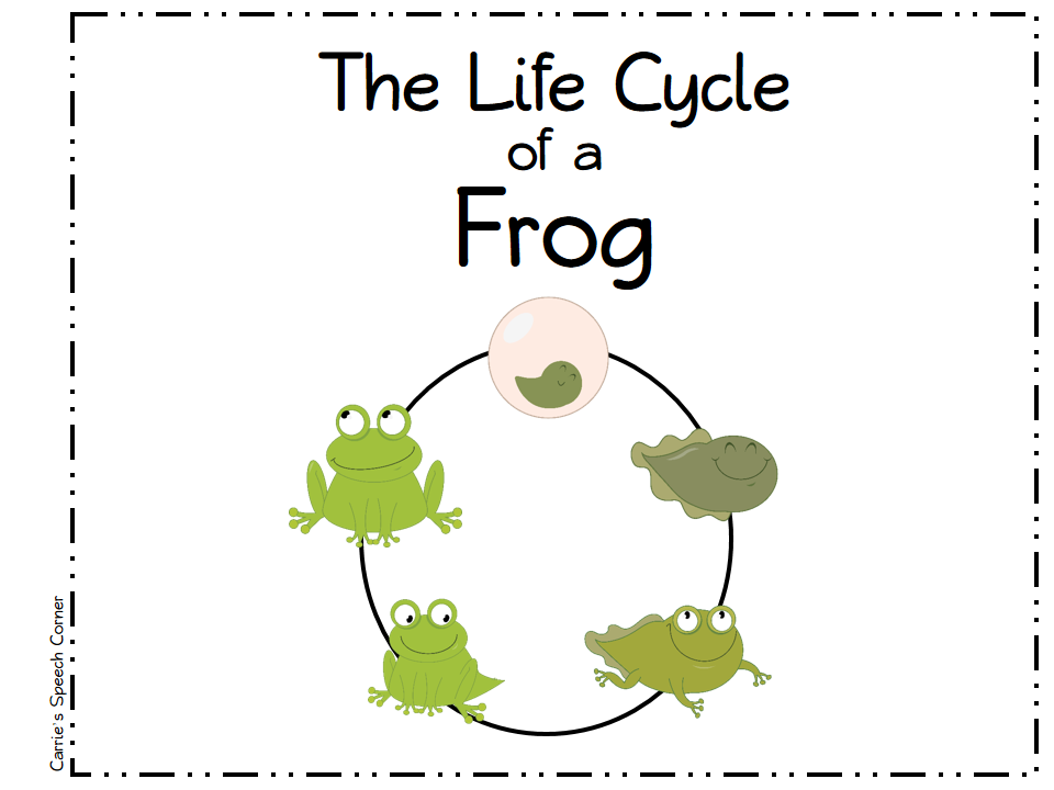 Carrie's Speech Corner: Life Cycle of a Frog - photo#3