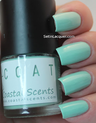 Coastal Scents Carnation Polish
