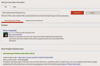 hasil pengecekan google authorship