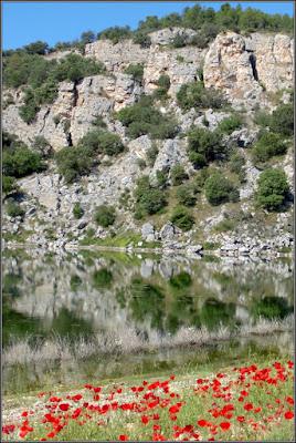 Laguna de Cañamares