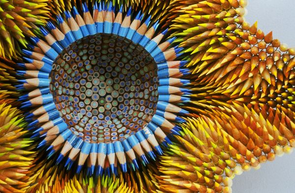 Colored Pencil Sculptures by Jennifer Maestre 1