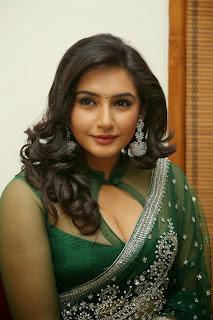 Kannada Hot Actress Sexy Cleavage Show in Transparent Blouse Saree