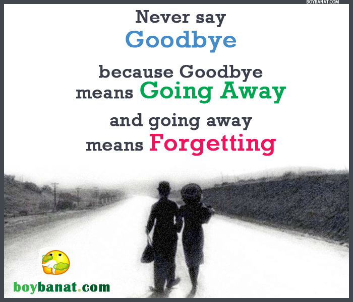Goodbye Quotes and Goodbye Sayings ~ Boy Banat