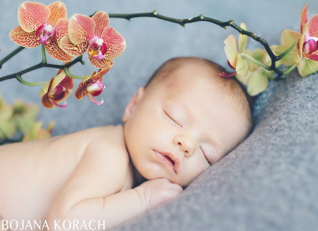 newborn baby boy photographed in san francisco by bojana korach photography sleeping with a beautiful orchid