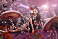 Mushroom - Alice Norin