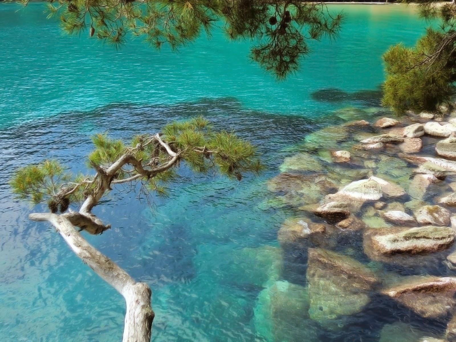 Mar Paraggi - Liguria - Italia