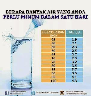 berapa banyak perlu minum air