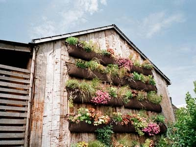 Windmill Farm: Vertical Gardening for Small Spaces