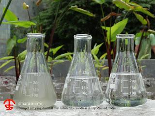 Sampel air keruh