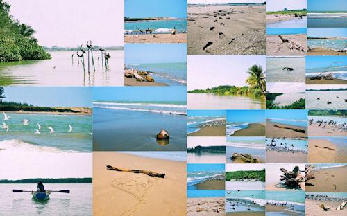 33 fotos de la playa y sus alrededores (Vacaciones)