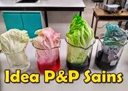 Perkongsian Idea PdP Sains