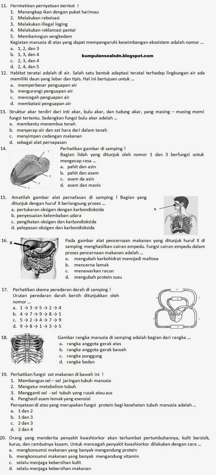 Semester Bahasa Indonesia Comment On Soal Bahasa Inggris