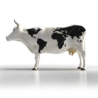 world map cow illusion