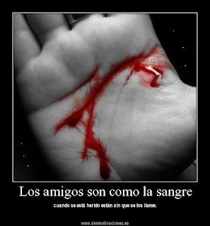 Los amigos son como la sangre, acuden a la herida sin que los llamen.