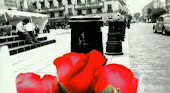 Mil rosas para mi...