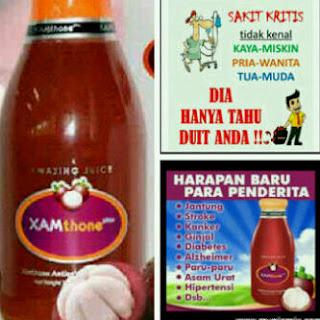 Obat Herbal Lemah Jantung