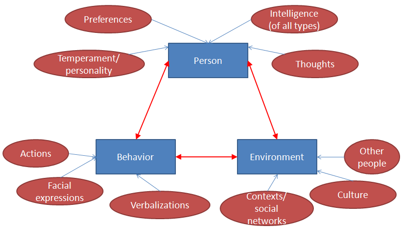 an analysis of albert banduras social cognitive theory Basic principles of social cognitive theory were set in eralier works of julian rotter 2), neal miller and john dollard 3)bandura's social learning theory starts from evolved assumption that we can learn by observing others.