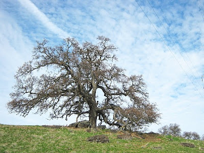 Open Space in Solano County California