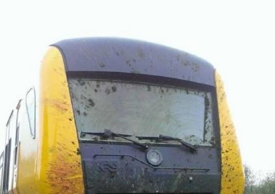 Ini yang Terjadi Apabila Lembu Dilanggar Keretapi