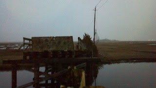 Manahawkin WMA, bridge to nowhere nj