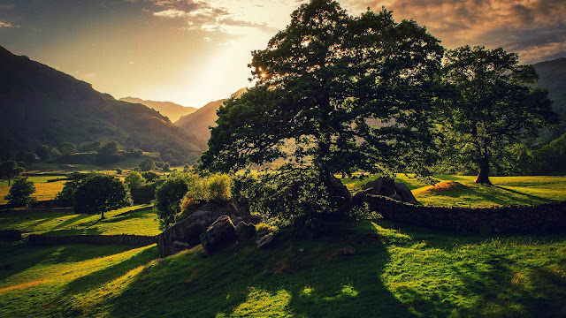 Britain nature landscape trees sun green hills HD Wallpaper