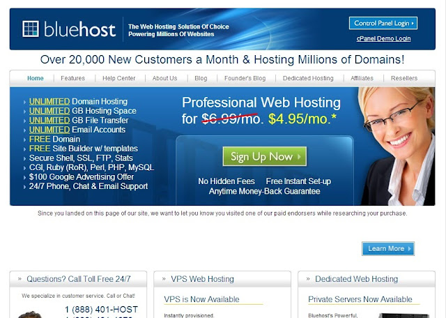 Bluehost Review - The Crazy Programmer