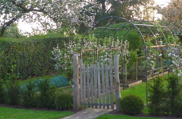 Mariondee Designs Veggie Patch 39 Garden Arch 39 Inspiration