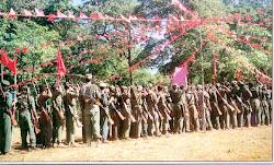 Revolución comunista en la India