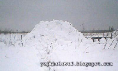 Четыре дадана под снегом