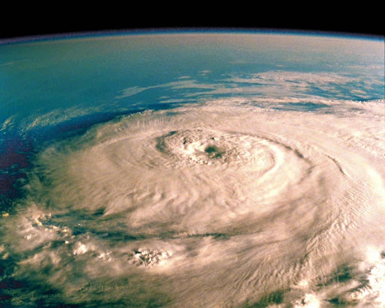 Hurricane opal facts