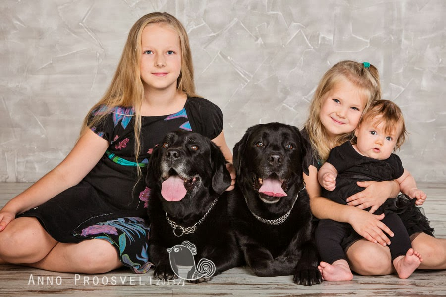lapsed-koerad-fotostuudios