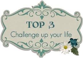 Top 3 für die Challenge # 68