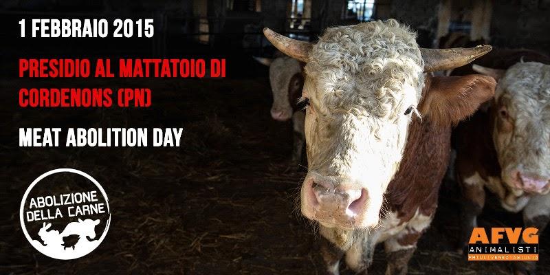 Domenica 01 febbraio 2015: Presidio al mattatoio di Cordenons (PN)