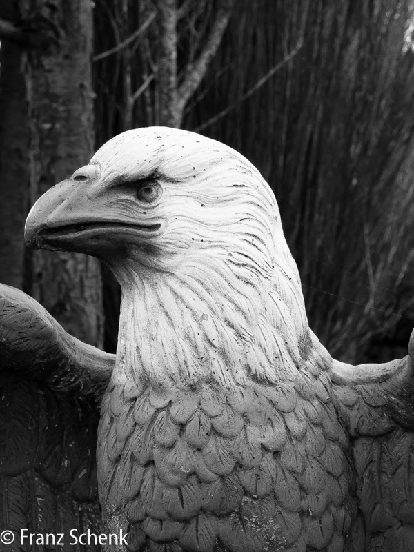 Eagle on Guard, N70 near Caherciveen