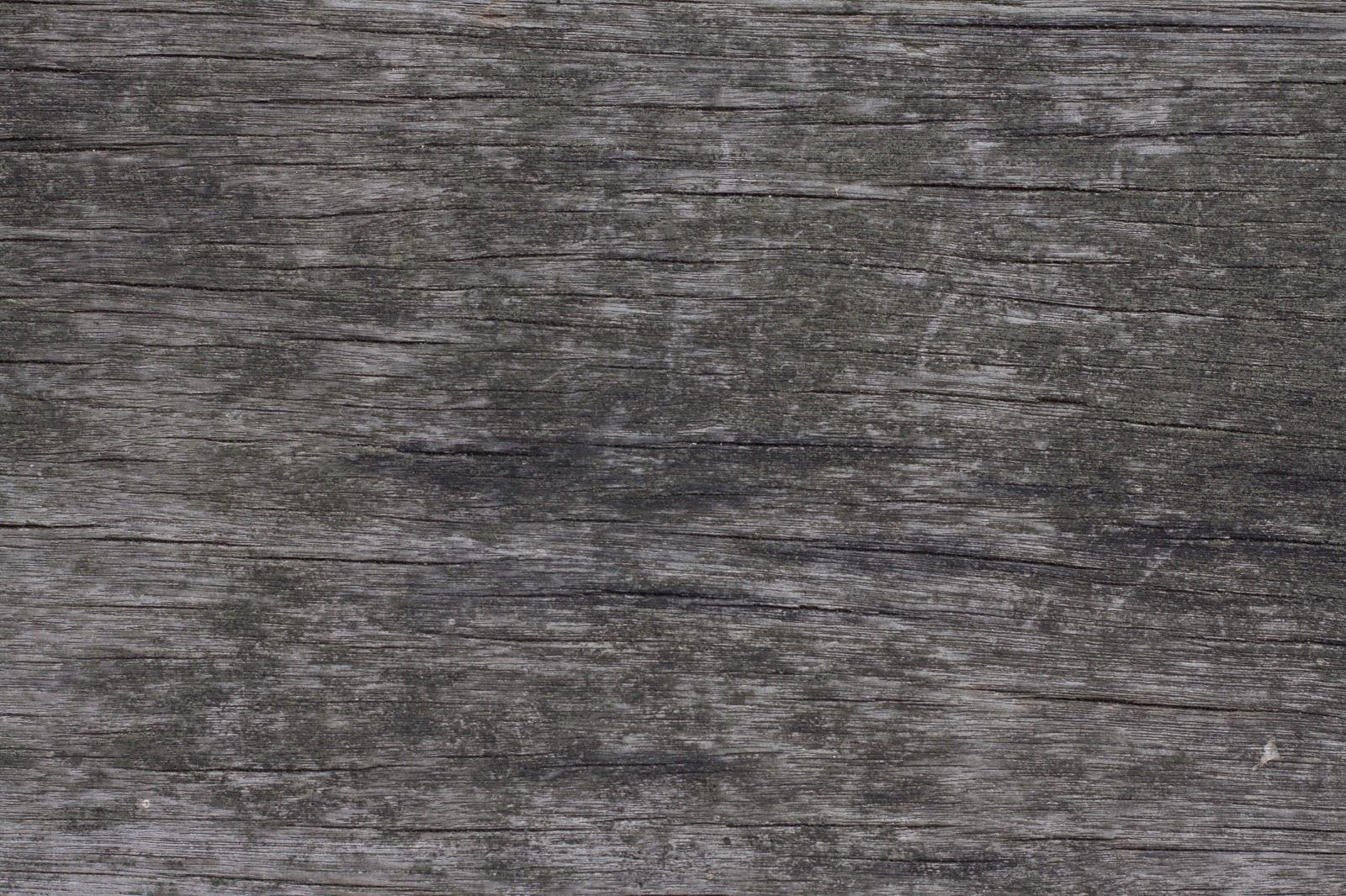 Wood dry cracked bench plank tree bark texture ver 19